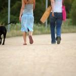 Ein Spaziergang mit dem Hund macht im Sommer am meisten Spaß